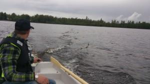 Båt/Sjön